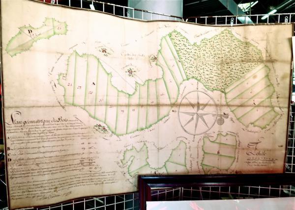 Plan forestier de 1775